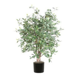 Vickerman 4 ft. Extra Full Black Olive Bush - Bring a bit of Italy home with this Vickerman 4 ft. Extra Full Black Olive Bush. Extra full foliage makes this four-foot beauty perfect for the home or office. It has natural wood trunks and life-like silk leaves that look and feel real. This silk black olive bush comes planted in a sturdy black plastic pot.About VickermanThis product is proudly made by Vickerman, a leader in high quality holiday decor. Founded in 1940, the Vickerman Company has established itself as an innovative company dedicated to exceeding the expectations of their customers. With a wide variety of remarkably realistic looking foliage, greenery and beautiful trees, Vickerman is a name you can trust for helping you create beloved holiday memories year after year.