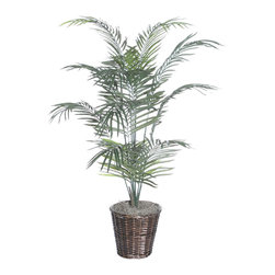 Vickerman - 5' Dwarf Palm Deluxe - 5' Dwarf Palm Deluxe in dark brown rattan basket with American made excelsior.