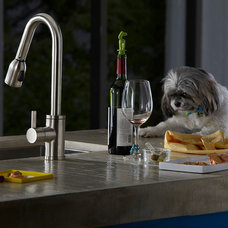 Contemporary Kitchen Faucets by Danze Inc