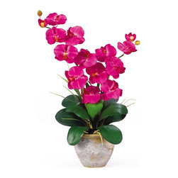 Nearly Natural - Double Phalaenopsis Silk Orchid Flower Arrang - Not for outdoor use. Features two amazing stems with 6 flowers each. Lush green leaves anchor this piece. Shows natural looking exposed roots. Included container size: 7 in. W X 5.5 in. H15.5 in. W X 12 in. D X 25 in. H (5lbs). This 25 inch double stem phalaenopsis silk orchid plant is nothing short of an explosion of color. Expertly arranged, this piece was designed to enhance any space. Each plant comes stacked with two amazing phalaenopsis stems each with 6 flowers and 2 buds. Finished with a gorgeous glazed ceramic vase this item is not to be missed. So whether you're looking for a gift or just want to perfect your decor...you're only one click away.