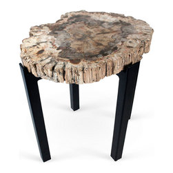 Petrified Wood Side Table - Contemporary metal legs for an ancient topper — what a juxtaposition!