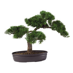 Nearly Natural - Cedar Bonsai 16in. Silk Plant - At 16 inches tall, this Cedar bonsai adds a soft touch of elegance to any room. Both the delicately crafted leaf pattern and the carefully designed branches make this tree a popular gift item for any occasion. Encased in a circular container filled with artificial soil, this bonsai tree provides a sense of peace and tranquility to your home or office area.