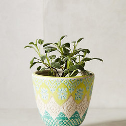 Etched Perennial Pot, Lime - Spice up your potted plants with some vibrant pots. These would make a perfect home for succulents.