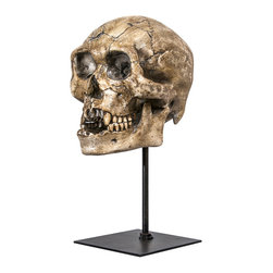 Interior Illusions - Skull Tabletop Decor, Natural - Place this spooky Skull Tabletop Decor on an entryway table for a dramatic look. Handmade with a tan resin finish and slim black stand, this skull makes a perfect addition to your Halloween-themed decor.