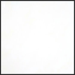 Stone & Co - Thassos White 12x12 Polished Marble Tile - White has always been a color of elegance and you can choose it as a theme for your interior when you purchase the Thassos White Marble Collection. This tiles spark beauty wherever they are installed; in the bathroom, kitchen, living room or even out door. Using either a classic or modern style approach, it�s about time you transformed how your house looked with Thassos marble tiles.Nothing can compare to Thassos white marble in beauty, and the possibility of playing around with colors gives you multiple options of beautifying your house. Marble stone is also known to be durable and tough in nature, so you won�t ever complain about a chip on the floor or a crack on the wall. Our Thassos White Marble collection will last you a lifetime and in this lifetime your home will always have a beautiful and natural edge you will appreciate every day.It�s about time you got rid of the cement floors and rotting wooden floors and have a complete makeover. Thassos White Marble tiles will make your home striking and elegant as opposed to the dullness you once knew of.Just make your order today of any tile choice in the Thassos White Marble collection we have and we�ll send the package and installation experts to your doorstep.