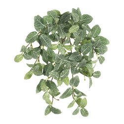 Silk Plants Direct - Silk Plants Direct Mini Fittonia Hanging Bush (Pack of 12) - Pack of 12. Silk Plants Direct specializes in manufacturing, design and supply of the most life-like, premium quality artificial plants, trees, flowers, arrangements, topiaries and containers for home, office and commercial use. Our Mini Fittonia Hanging Bush includes the following: