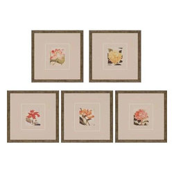 Paragon Art - Paragon Blooms ,Set of 5 - Artwork - Blooms ,Set of 5               ,  Paragon Artist is Schenck , Paragon has some of the finest designers in the home accessory industry. From industry veterans with an intimate knowledge of design, to new talent with an eye for the cutting edge, Paragon is poised to elevate wall decor to a new level of style.