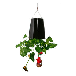 Sky Planter Ceramic Medium - Black