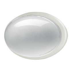 Eurofase Lighting - Eurofase Lighting 23904 Class Oval 280 Dual Wall / Ceiling Flushmount - Glamorous and alluring, this wall sconce is a wonderful way to spruce up your home. Reward yourself with this spectacular wall sconce featuring incandescent or fluorescent bulbs.Features: