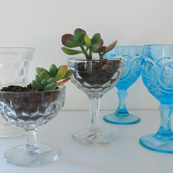 Antique Wine Glasses - At amydutton Home you can find all sorts of home decor accessories! Antique wine glasses make a great conversation piece, not to mention a beautiful addition to your table setting!