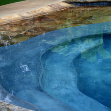 Tropical Swimming Pools And Spas by Preferred Pools Inc.