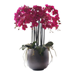 Winward - Phalaenopsis Orchid In Pot Flower Arrangement - You may love the refined look of an elegant orchid, but there's no denying the flower's high-maintenance ways. Forget the fertilizer and splurge on a high-end permanent version. The tall ceramic pot makes a stately home for this year-round showstopper.