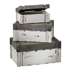 Cyan Design - Cyan Design Alder Boxes (Pack of 3) X-17420 - From the Alder Collection, this Cyan Design box set features three identical boxes, with each box done at a different size. These nesting boxes feature Gray tops, with Distressed White bases, which helps to create a raw, almost primitive feel to the set.