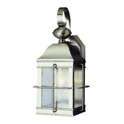 Trans Globe Lighting - Trans Globe Lighting 4632 BN Outdoor Wall Light In Brushed Nickel - Part Number: 4632 BN