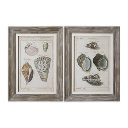Uttermost - Vintage Shell Study Framed Art, Set of 2 - Prints are surrounded by wooden frames featuring an allover gray wash with light and medium gray distressing accented by off-white linen liners. Prints are under glass.