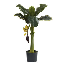 3' Banana Tree - Hungry? Well, if so, we'd recommend heading for the fridge instead of this Banana Tree. Although we wouldn't blame you for trying to pick the fruit - it looks that real. With a strong center trunk, large leaves fanning out in every direction, and some low-hanging fruit begging to be picked, this faux banana tree is ideal for your eclectic decor, be it home or office. makes an interesting gift as well. Height= 3 Ft. x Width= 23 In. x Depth= 23 In.