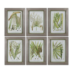 Uttermost - Uttermost 41515  Palm Seeds Framed Prints, S/6 - Champagne silver leaf frames with medium green inner lips with a brown and gray wash. prints are under glass.