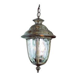 Trans Globe - Trans Globe 5904 Brt 2-Light Hanging Lantern - Trans Globe 5904 BRT 2-Light Hanging Lantern
