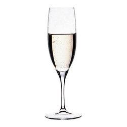 Hospitality Glass - Primeur 6.75 oz Champagne Flute 24 Ct - Primeur 6.75 oz Champagne Flute