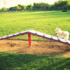 5 of America's Best Dog Parks