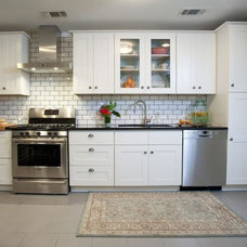 Contemporary Kitchen Cabinets by Toledo Cabinets