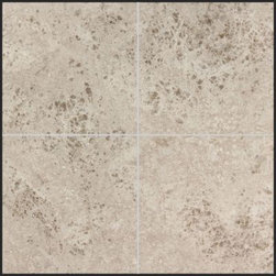 Stone & Co - Tundra Gray Polished 6x6 Marble Tile - Grey for interior dŽcor may not be everybodyÕs cup of tea; however the conversation will change in a snap once you sample the Tundra Gray Polished Marble Mosaic Tiles. Completely donning a grey color, these tiles are an excellent pick for any home that wants an executive touch. There is more about the Tundra Gray Polished tiles than what meets the eye.Made from tough marble stone, these tiles are highly durable and resistant to chipping and cracks. The polished surface gives the tiles a sparkle fit to bring life to any room in the house. If renovating the bathroom, you can choose to go with a classic or modern style. The beauty of a Tundra grey background is highlighting the classy faucets and tub you have installed to have your serene baths.For the kitchen, going with a grey background gives it a complete professional look where all your cooking happens. This is a relaxed look compared to having fruit or veggies painted tiles running all over the kitchen. You can have the same shade of tundra grey on your countertops and backsplash.Your living room should be the climax of it all; the tundra grey tiles can create that lovely polished floor cover and you can have a little woolen or Persian rugs complimenting the tantalizing spread of grey.