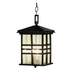 Joshua Marshal - Two Light Black Clear Seeded Rectangle Glass Hanging Lantern - Two Light Black Clear Seeded Rectangle Glass Hanging Lantern