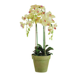 "Jane Seymour Botanicals - Phalaenopsis Orchids in Pot, 3 Stems, Yellow - Ah, the orchid! So desirable, so delicate — so difficult to cultivate. Luckily, these yellow and white ""forever flowers"" are remarkably realistic in every sense, except they'll never lose a single petal."