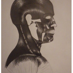 Muscles Of The Face (Original) by Richard Powell - This study I did back in 2010 when I was focusing on the human body from the inside out. It took approximately 14 hours all together and over 8 different pencils.