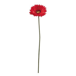 Silk Plants Direct - Silk Plants Direct Gerbera Daisy (Pack of 12) - Red - Pack of 12. Silk Plants Direct specializes in manufacturing, design and supply of the most life-like, premium quality artificial plants, trees, flowers, arrangements, topiaries and containers for home, office and commercial use. Our Gerbera Daisy includes the following: