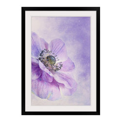 Anemone wall art from Great BIG Canvas by Priska Wettstein. - Anemone wall art.  Available at www.GreatBigCanvas.com as a stretched canvas, framed print, print, or wall peel, in various sizes, by Priska Wettstein.