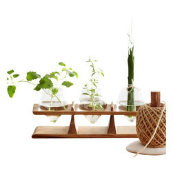Window Sill Herb Holder - Cut herbs from the garden finally have a place to keep fresh until needed. Nestle them in tulip shaped mouth blown vases in your bay window atop their acacia wood holder and have fresh thyme, basil and mint anytime. Sleek and gorgeous, this pretty little object is functional while lending a fresh, lovely look to any kitchen.