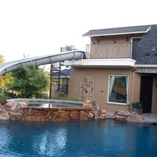 Traditional Hot Tub And Pool Supplies by Dolphin Waterslides