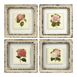 Vintage Chic and Shabby Roses Framed Artwork - Set of 4 - *Botanical style floral prints hang suspended in glass with an antiqued cream frame.