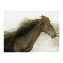 Kathy Kuo Home - Hyden Rustic Lodge Modern Ghost Horse Photo Wall Art - Unframed - Wild horses. This custom-made piece of artwork is a must-have for your collection, especially if you're an aficionado of all things horses. The sepia-toned image captures the grace and beauty of a running mare.