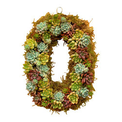 Flora Pacifica - Oval Sedum Wreath - This unusual shaped wreath is constructed of approximately 40 succulents.  These plants are different varieties of Sedums including Adolphy, Aurora Blue, Vera Higgins, Jelly Bean and Angelina.  It will look great hanging on your wall, door, or even your fence or porch.
