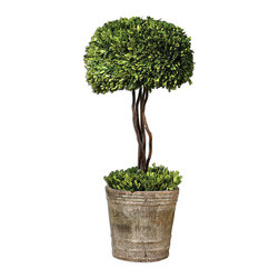 Preserved Boxwood Globe Topiary - Its all in the details and the Preserved Boxwood Globe Topiary lends an excellent finishing touch to any d�cor. Pair a couple of these delightful, maintenance free, topiaries in your entry way, back patio or anywhere else you can dream up that may need a bit of greenery. Beautifully realistic without the mess, fuss and watering of real topiaries.