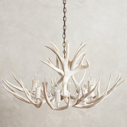 Shed Antler Chandelier - Crafted from naturally shed deer antlers collected in North America, this magnificent chandelier makes a dramatic focal point in your dining room.
