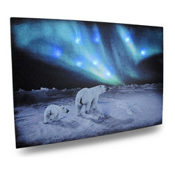 Zeckos - Northern Lights Polar Bears Lighted LED Canvas Wall Hanging - This wonderful LED Lighted printed canvas depicts a pair of polar bears in the icy Arctic, checking out a stunning display of the Northern Lights It features flickering LED lights that really make it shine It measures 14 inches tall, 20 inches across and 3/4 inch deep. It easily hangs on the wall using a single nail or screw. The flickering lights are powered by 2 'AA' batteries (not included), are controlled by an inconspicuous on/off switch on the side of the canvas, and unsightly wires are concealed and contained by the vinyl backing. It will look great on the walls of any office, library or gathering room, and makes a great gift for nature lovers
