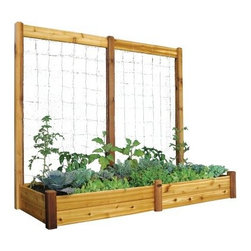 Gronomics 34L x 95W x 13H in. Raised Garden Bed with Trellis Kit - Make this year your greenest yet with the help of the Gronomics 34L x 95W x 13H in. Raised Garden Bed with Trellis Kit. This kit gives you both a raised bed and trellis for expanded gardening options that let you cultivate a wide variety of flowers, veggies, and climbing plants. Made of cedar, this modular system is easy to put together and is naturally weather, mold, and insect resistant. The raised bed system makes tending soil a breeze as it minimizes weed growth and doesn't need tilling or soil amending. Use the trellis sections to grow climbing plants or veggies. It's easy to assemble and is ideal for most types of plants or flowers.About GronomicsWith Gronomics, you no longer need a big yard to do your gardening. The Minnesota-based company manufactures unique, ergonomically designed 100% Western Red Cedar garden planters that offer tool-free assembly. Gronomics makes everything from elevated beds, raised beds, planter benches and much more, all of which are designed to make gardening easy and more accessible for all ages. Herbs, vegetables and flowers can all be tended to while standing or sitting and the company's unique designs even allows easy access for those in wheelchairs.