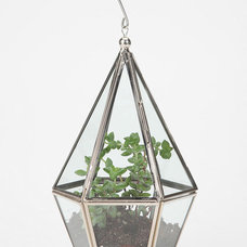 Modern Terrariums by Urban Outfitters
