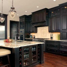 Kitchen Design Trends for 2011 from the NKBA | Phyllis Kogan Interior Design