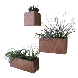 The Woody Beckers - Wall Planters, plants not included, Mahogany - Spruce up your home with this set of wall planters made from sustainable African Majogany wood.  Includes plant liners, wall mounting instructions, and hardware.  Plants are not included.