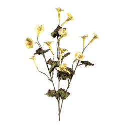 Silk Plants Direct - Silk Plants Direct Dried Trumpet Flower (Pack of 12) - Pack of 12. Silk Plants Direct specializes in manufacturing, design and supply of the most life-like, premium quality artificial plants, trees, flowers, arrangements, topiaries and containers for home, office and commercial use. Our Dried Trumpet Flower includes the following: