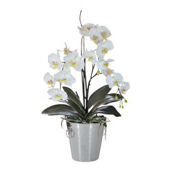 Jane Seymour Botanicals - Orchid Phalaenopsis in Vase - Love the look of orchids, but not the painstaking care they typically require? Now you can enjoy beautiful, healthy Phalaenopsis orchid blooms year-round with this permanent orchid arrangement in a classic metal vase. So realistic, even you might occasionally be fooled.