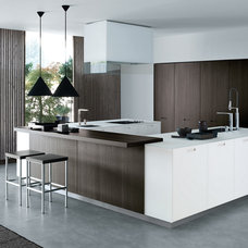 Modern Kitchen Cabinets by Switch Modern