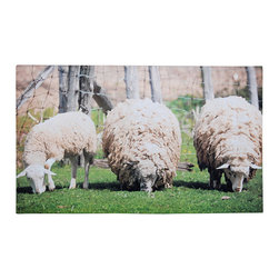 Esschert Design - Printed Doormat, Sheep - You may be counting sheep in bed at night but by day, this trio will guard your front door. The affordable and fun, this ecofriendly printed doormat is made of recycled rubber and is easy to clean after many effective shoe wipes.