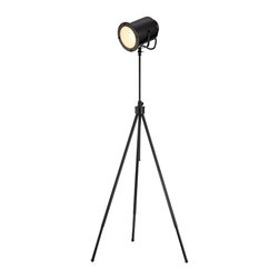 Photographer's Spotlight Floor Lamp -