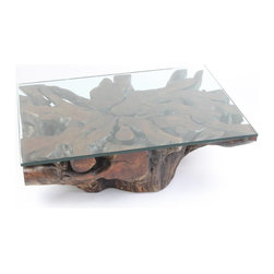 Mango Root Coffee Table – Glass Top - Unique coffee table made with a reclaimed mango root. Glass top optional.
