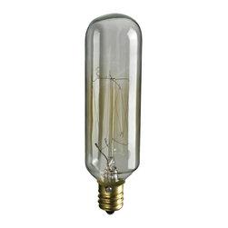 Elk Lighting - Candelabra Filament Bulb - Collection candelabra filament bulb. Antique style incandescent bulb for use with elk lighting fixtures.